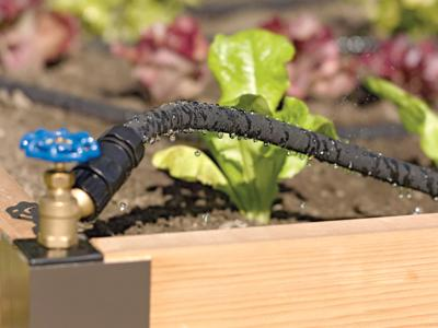 Conserve time and water while growing beautiful and productive gardens