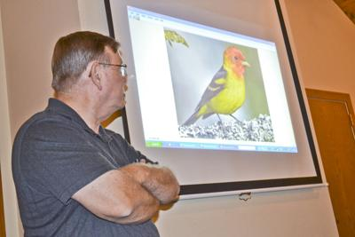Birds of a feather flock to Noon Rotary meeting