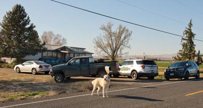 NEIGHBORHOOD DOG FLOKI SAFE