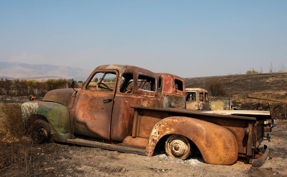 FIRE RAVAGED LANDSCAPE