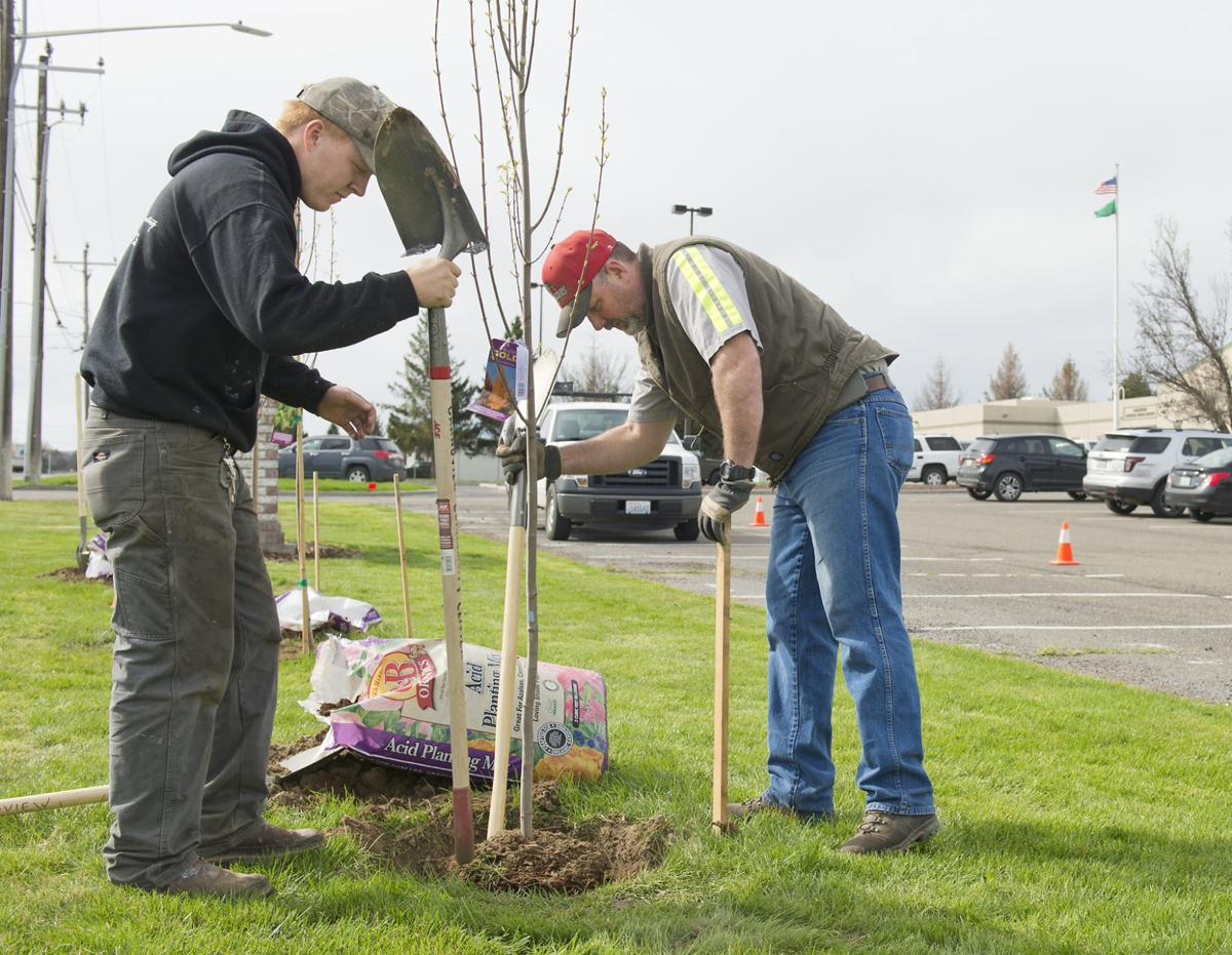 Grandview marks Arbor Day, kids plant maple trees