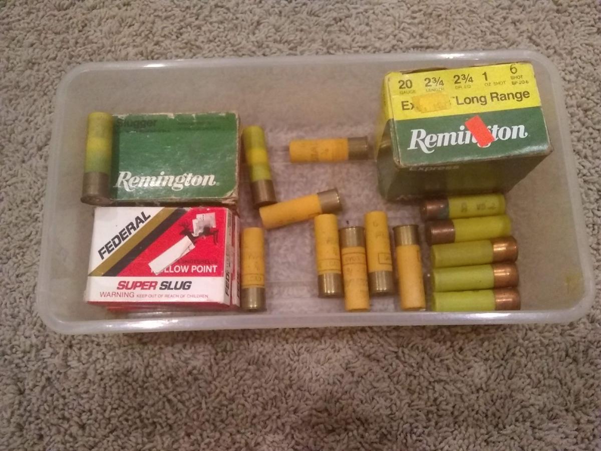 Ammunition image 1
