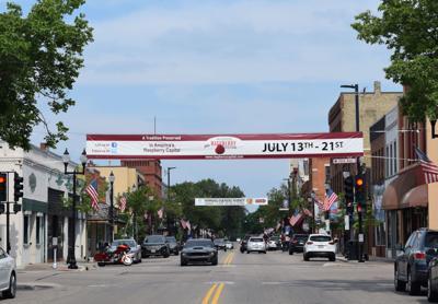 Raspberry festival banner