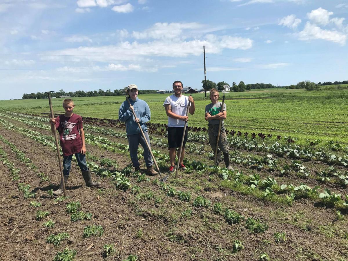 Volunteering in the fields