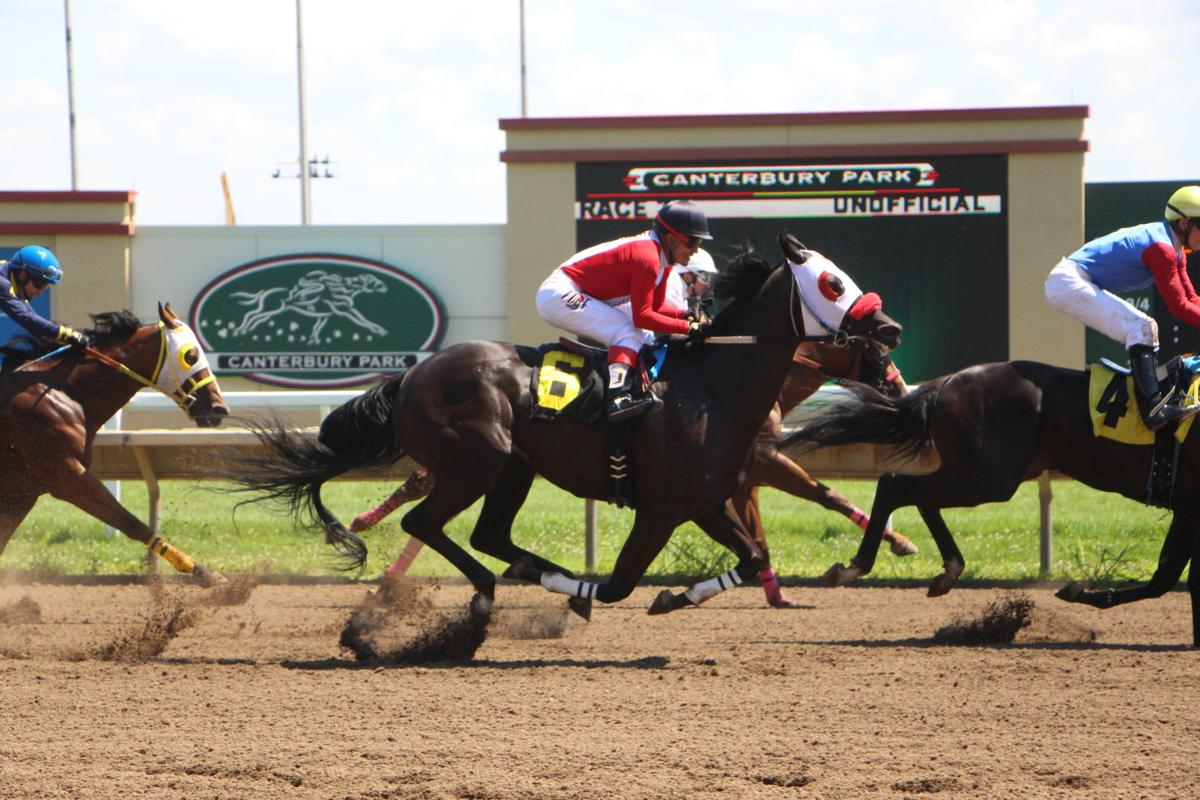 wednesday night racing at canterbury park starts in august | local