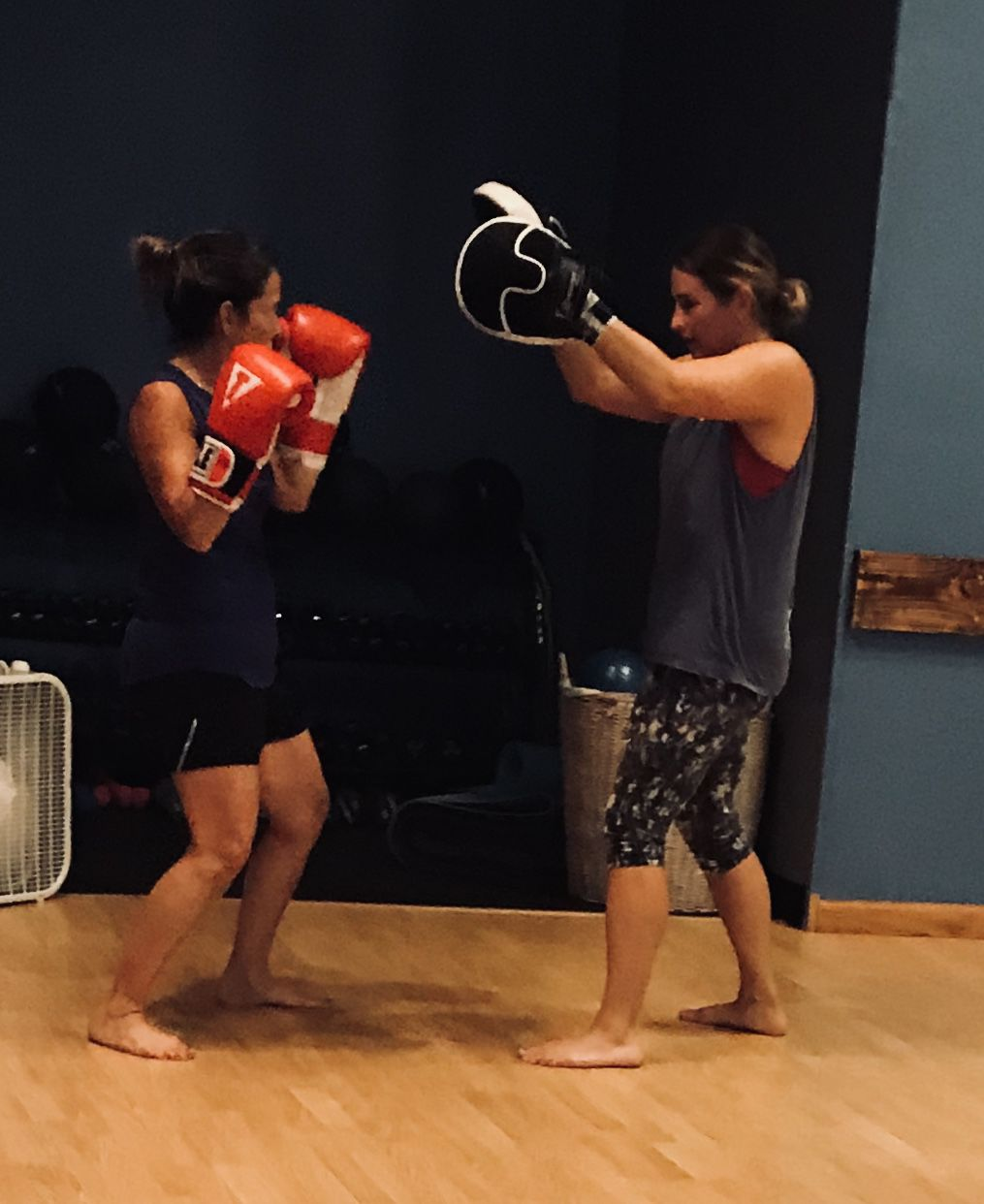 Sculpt and Shred - Boxing