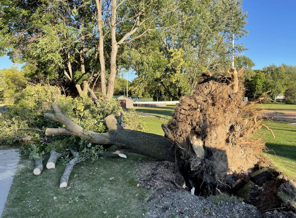 Sept. 17 storm — Trost Park