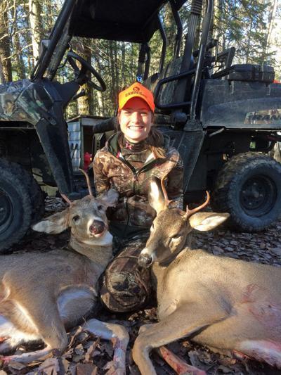 Allison's deer
