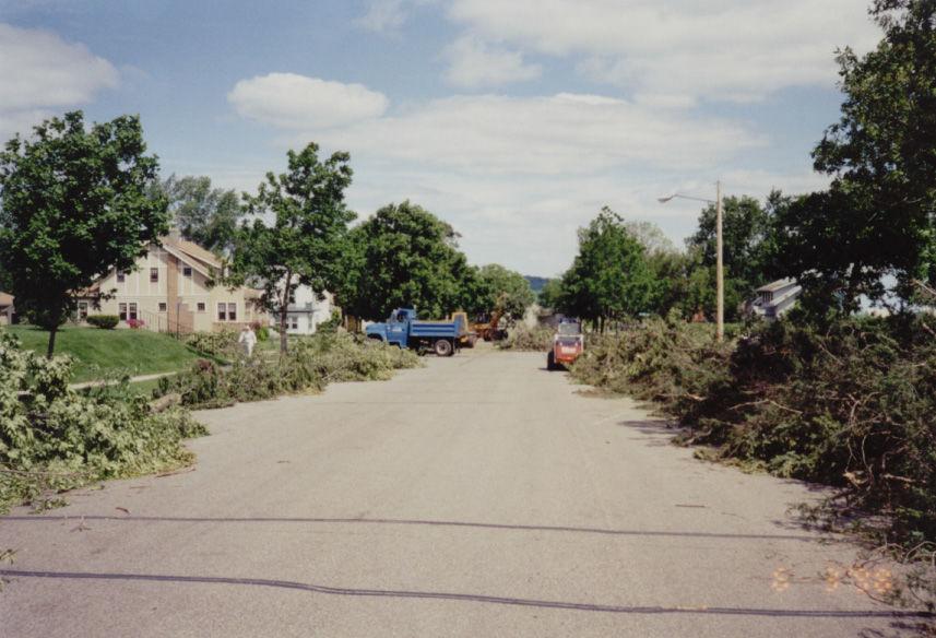 1998 windstorm