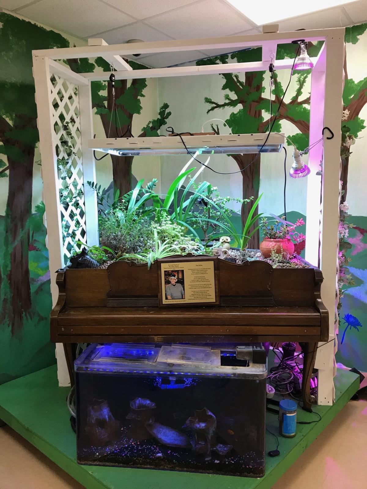 Aquaponics garden at Tokata Learning Center