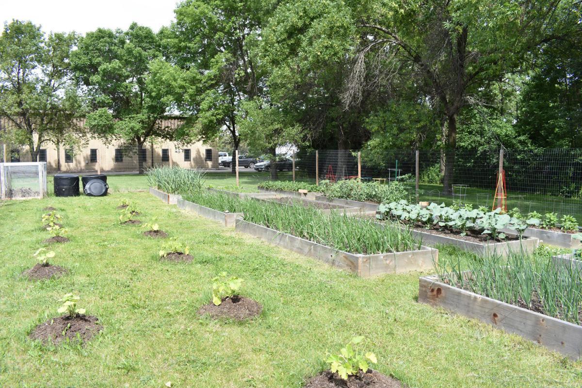 Prop garden 2