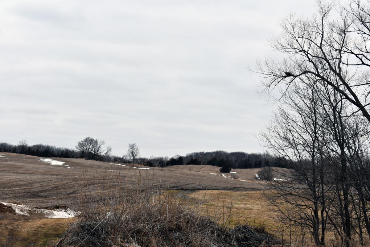 Hammers farmland field