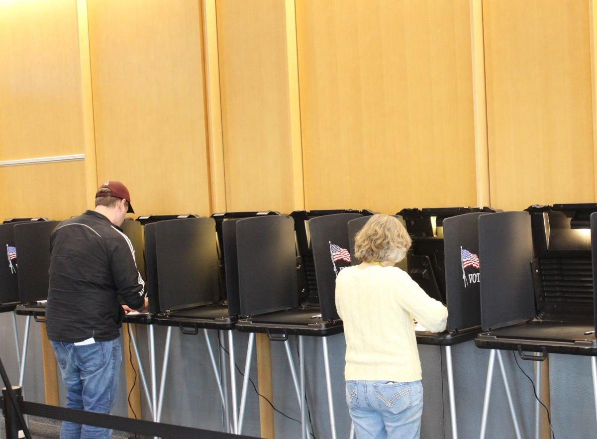 Early voters 2