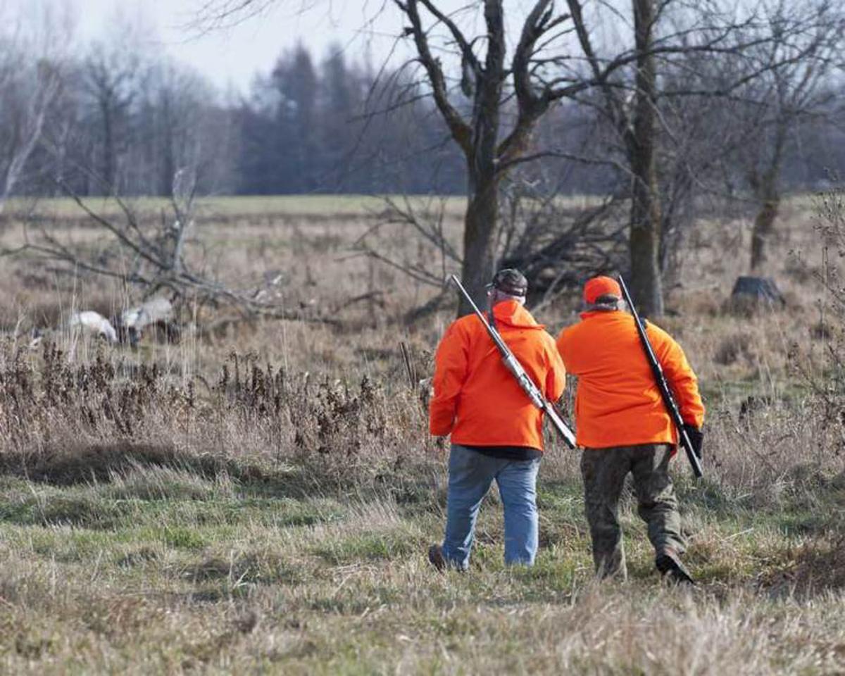 Hunting Input