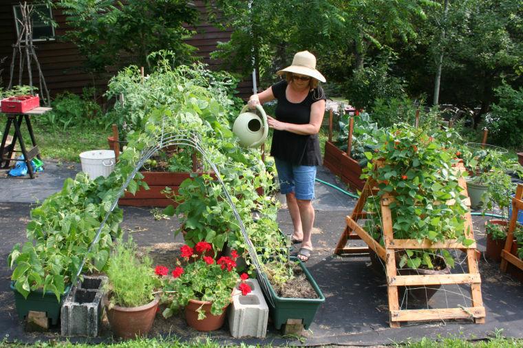 master gardeners - Garden Fever