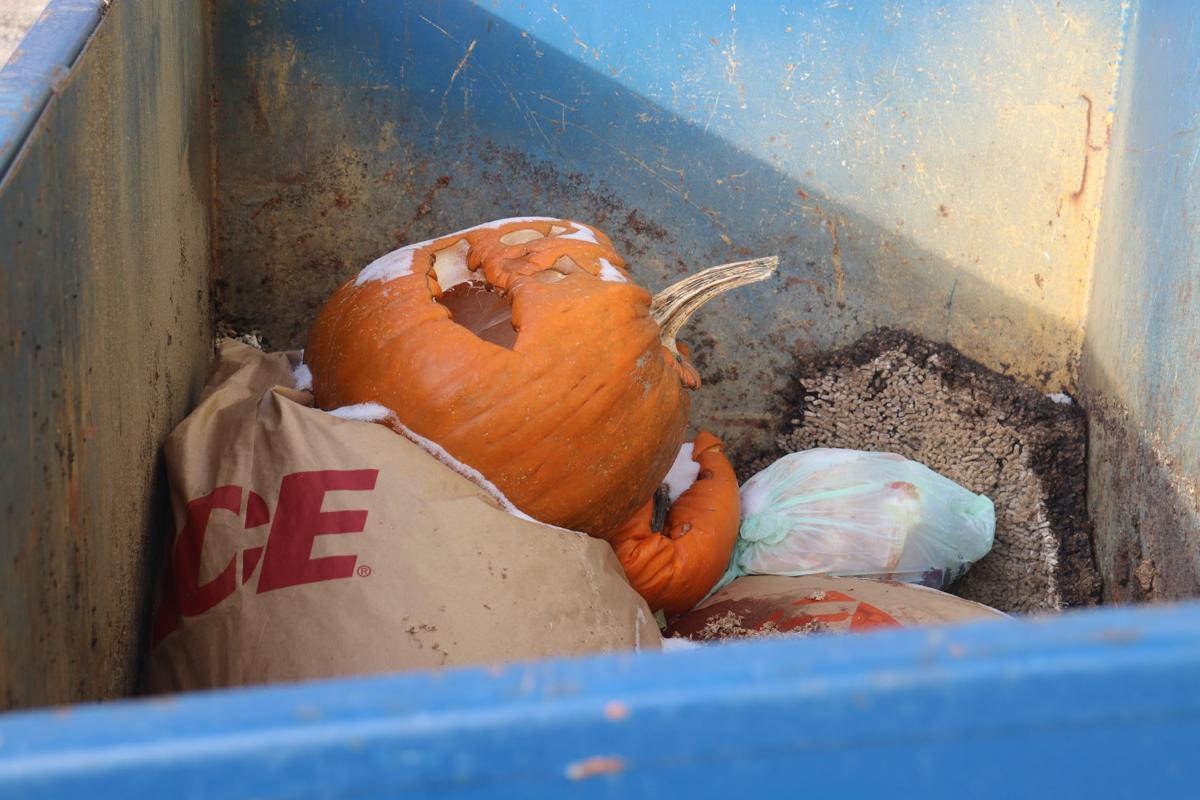 Organic waste in Jordan