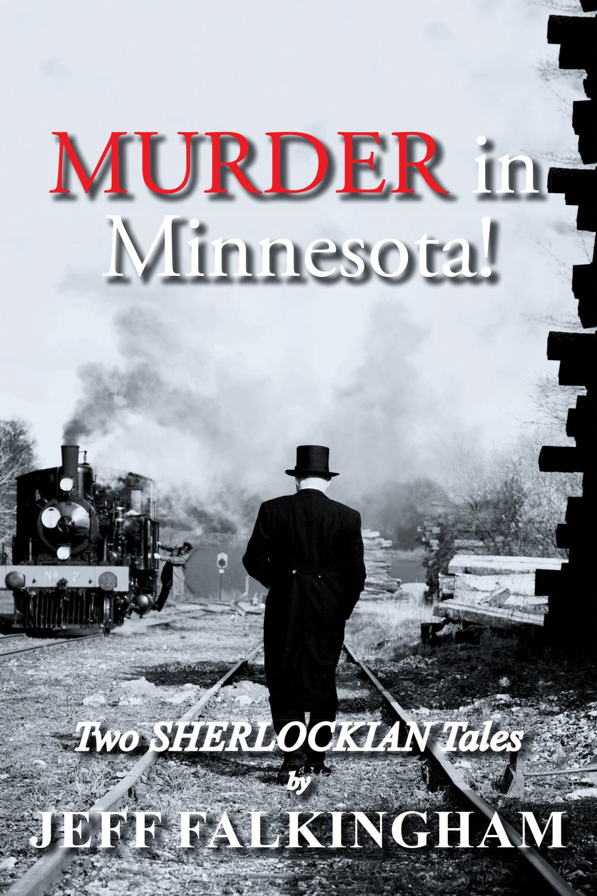 Two Sherlock Holmes books in one - Murder in Minnesota!