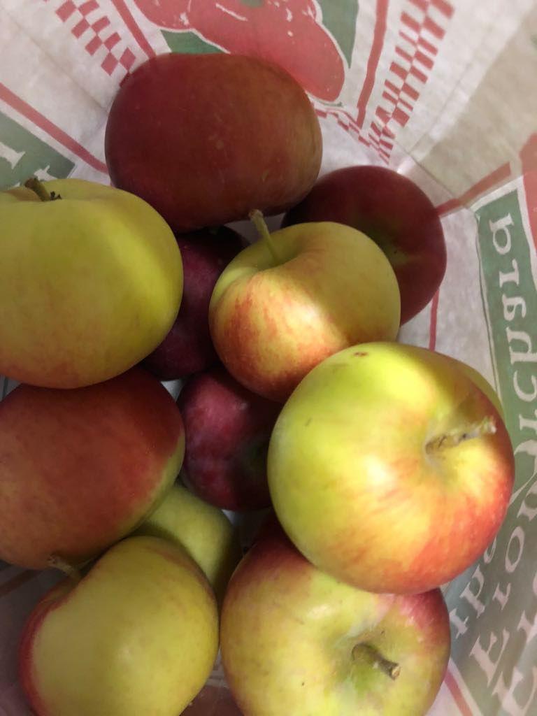 Jim's Apple Farm apples