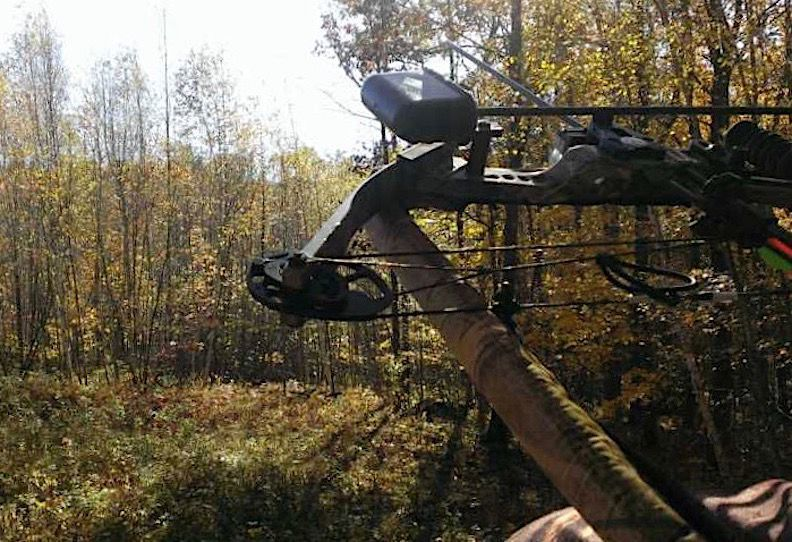 Archery Hunts