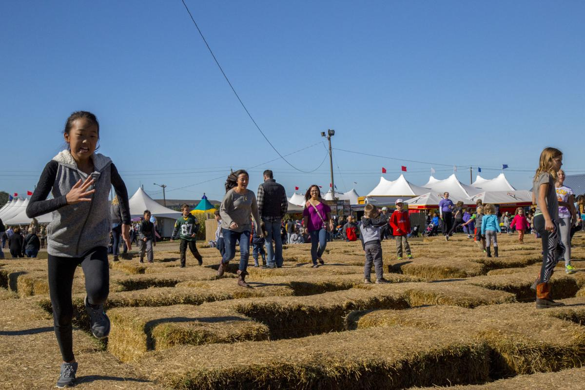 Sever's Fall Festival 1