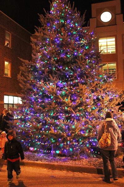 Christmas tree lit (copy)