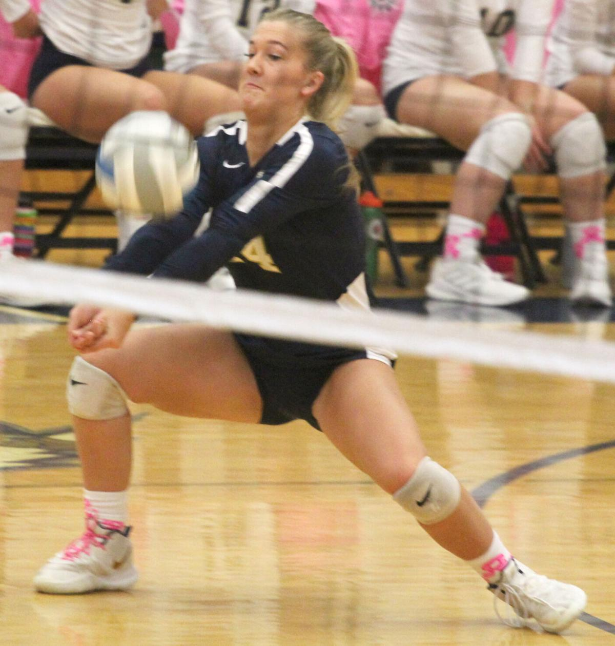 Chan Volleyball - Rogers