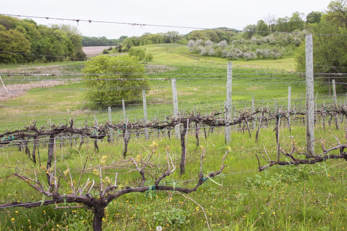 Parley Lake Winery property