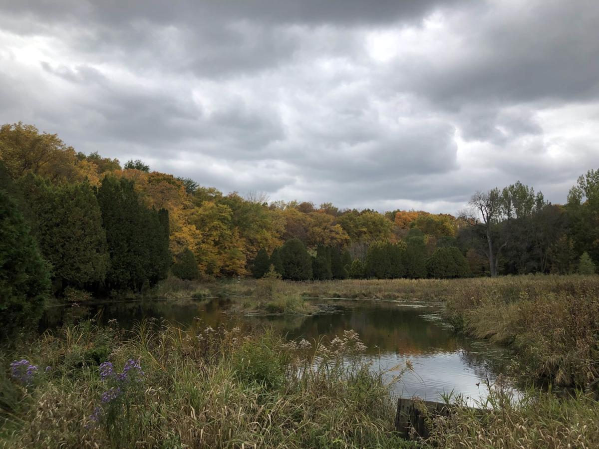 Minnesota Landscape Arboretum 2