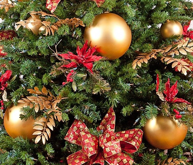 Disposing Of Christmas Trees: Shakopee Residents Have Choices For Christmas Tree