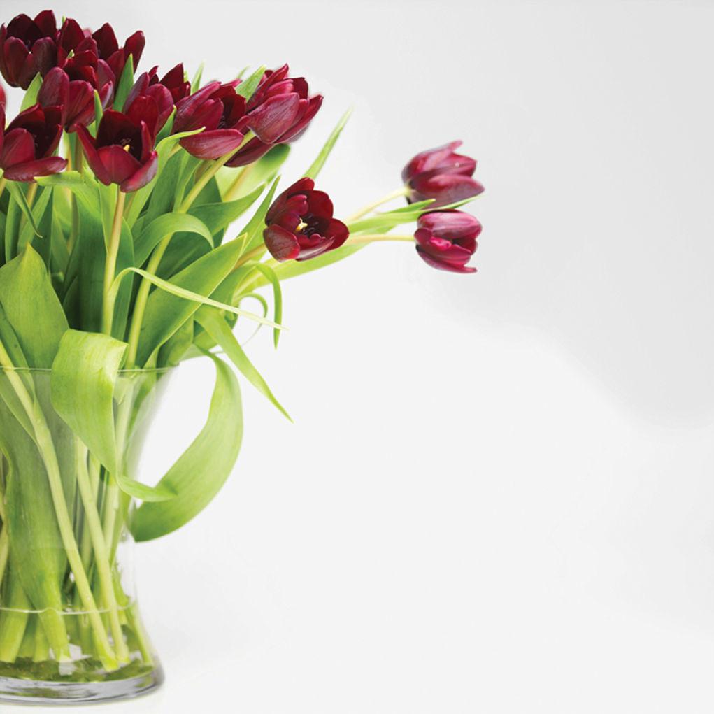 How to make cut flowers last longer lifestyle swnewsmedia cut flowers take steps to make floral arrangements last izmirmasajfo