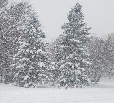 Snow Storm (copy)