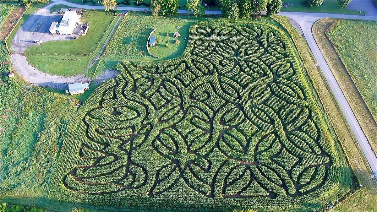 WCN 09292021 maze 1