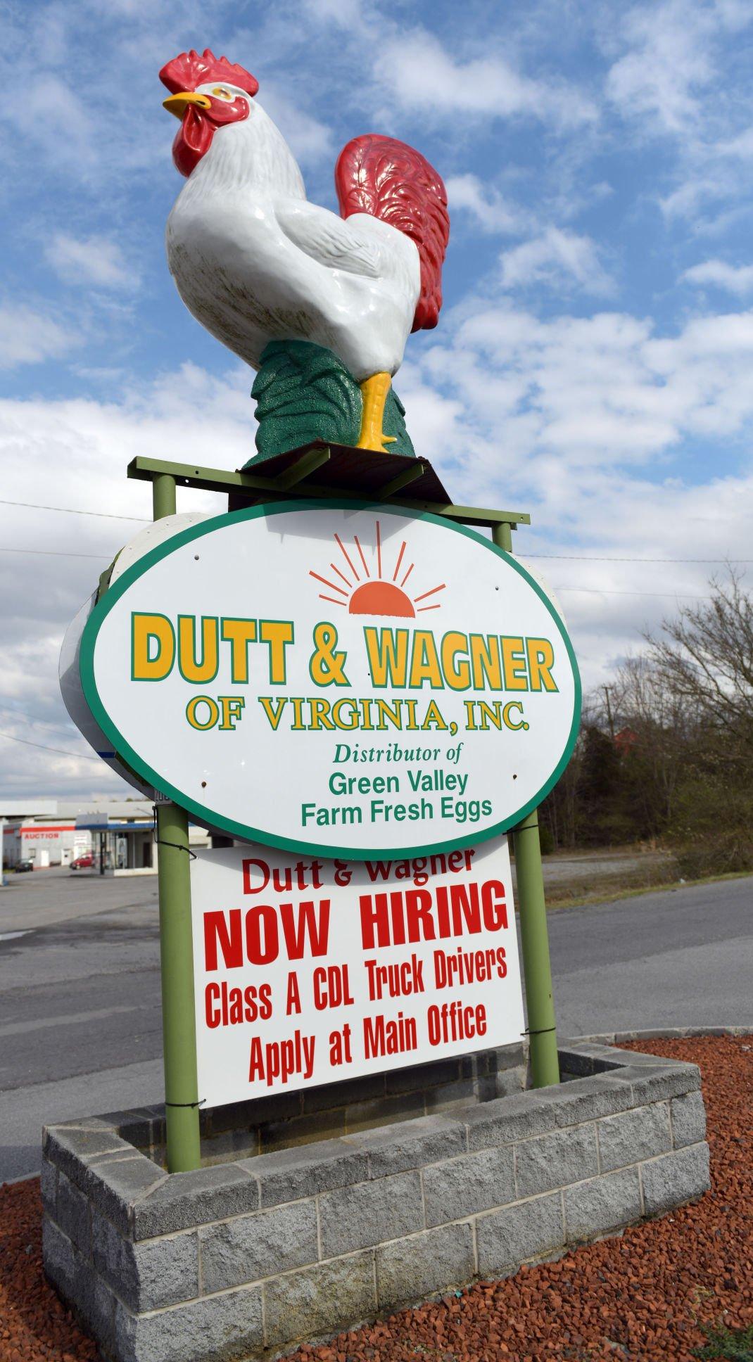 Dutt Wagner Eggs 02