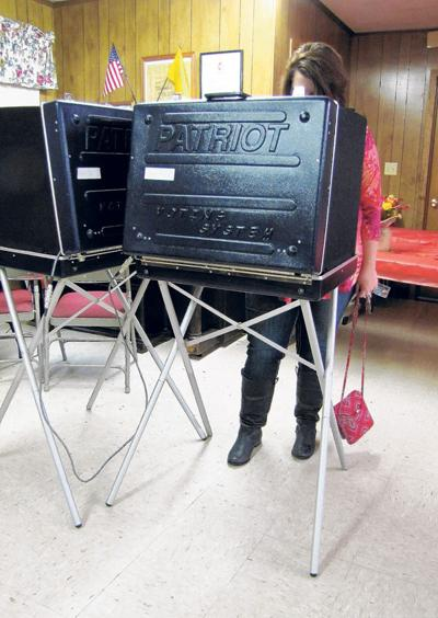 Bland County election 2015