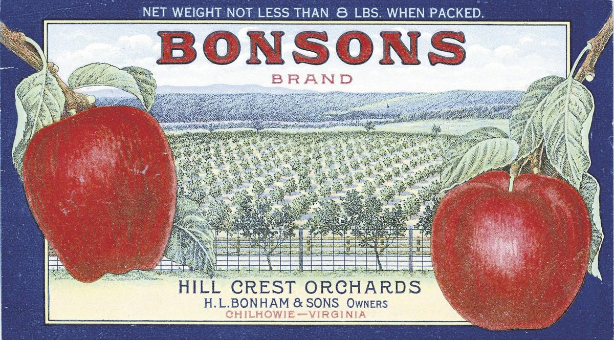SMY 0928 edit-Bonsons Apples Ad.jpg