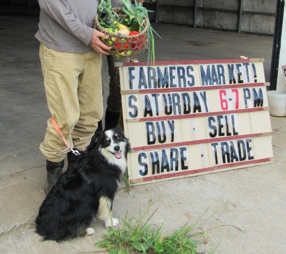 North Fork Garden Exchange