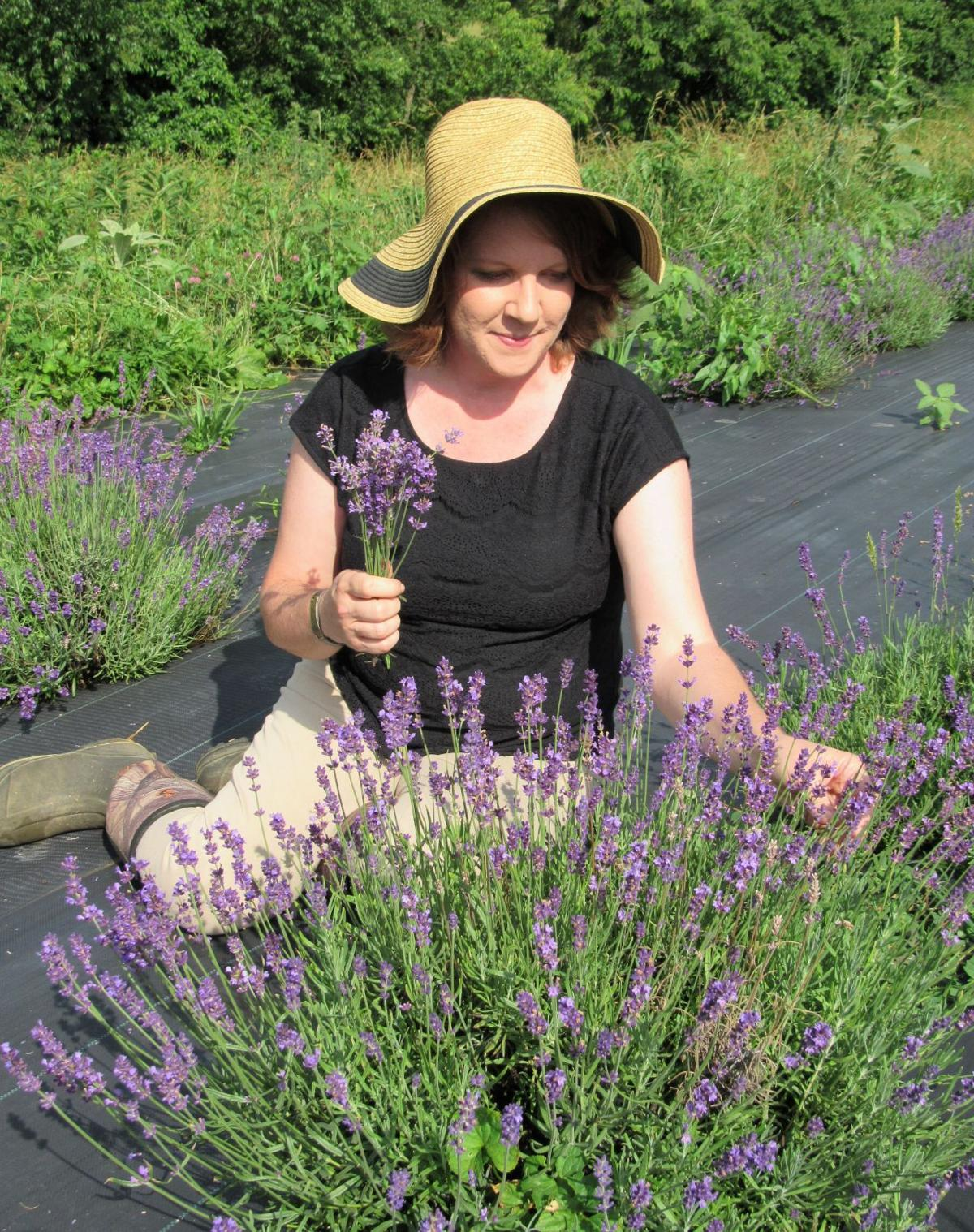 Local lavender farm offers classes, soaps and more | News