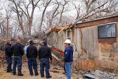 Wind blows tree onto El Prado mobile home