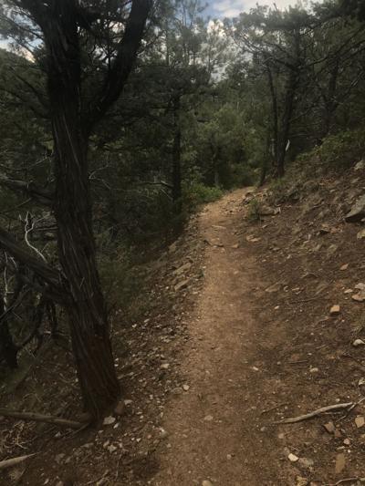 Devisadero Loop Trail