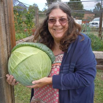 Linda Sue Thayer