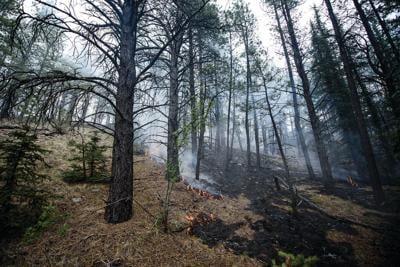 Prescribed burn to start today near Tres Piedras