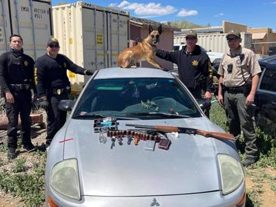 Sheriff arrest 16 on warrant roundup
