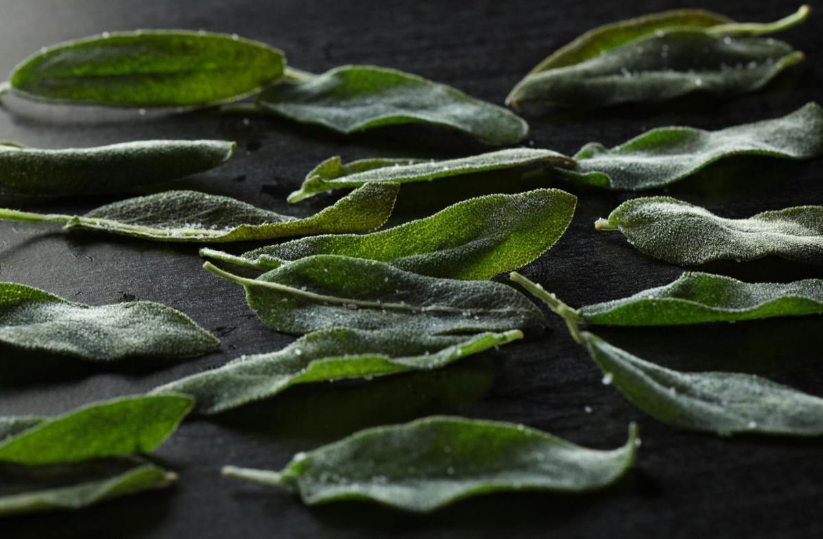 Fresh sage leaves fry up beautifully in a little olive oil and make a handsome garnish to the pasta. Use the oil to flavor the dish, and save the extra for salads and other pasta dishes.
