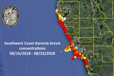 Pinellas County Map Florida.More Signs Of Red Tide Reported On Pinellas County Beaches