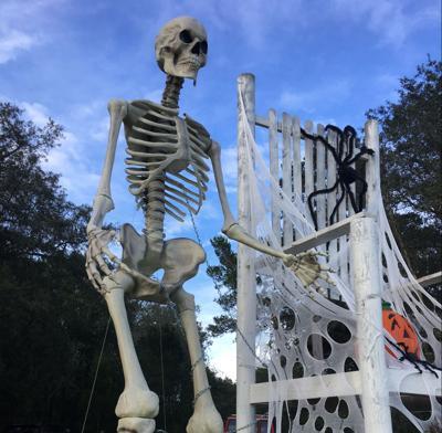 Halloween happenings around Tampa Bay