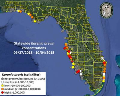 East Winds Keep Red Tide Offshore Mostly Pinellas County