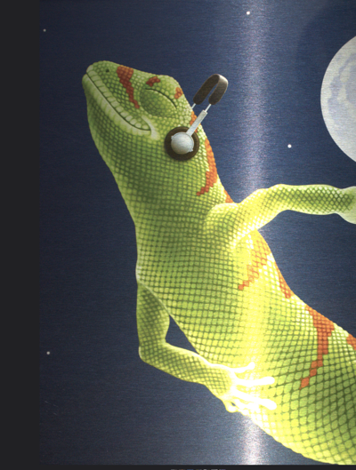 n-Geckofest082219 AM.png