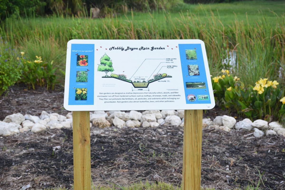 Oldsmar officials shower praise on new rain garden