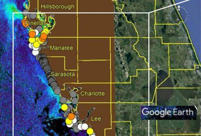 Red tide creeps into Pinellas County's waters