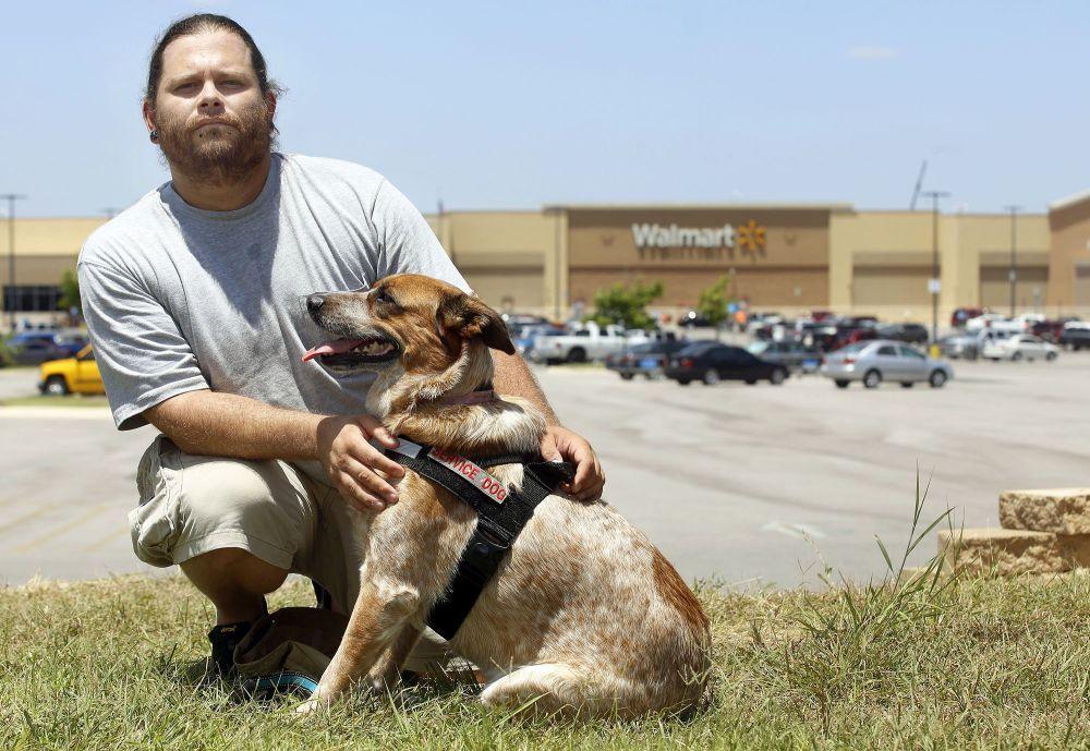 veterans service dog